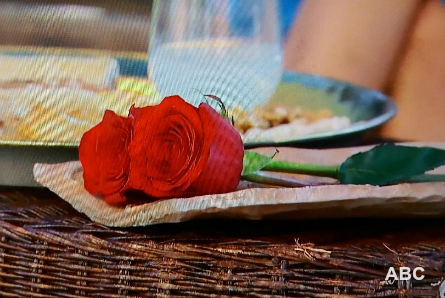 The Bachelor 22 week 7 roses