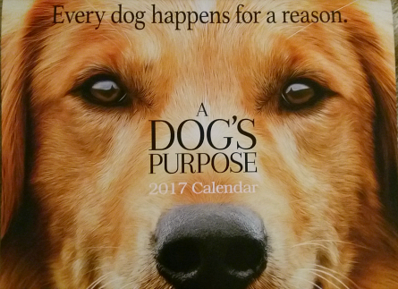 A Dog's Purpose calendar giveaway