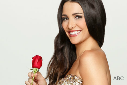 Bachelor 21, Andi Dorfman returns