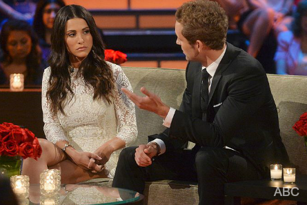 The Bachelorette 10,  Andi Dorfman, Nick Viall