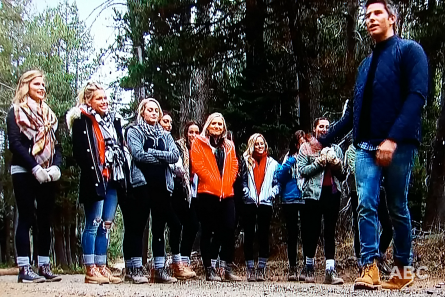 The Bachelor 22 week 4, Arie's group date